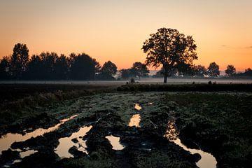 Landschap tijdens zonsondergang van Andy Van Tilborg