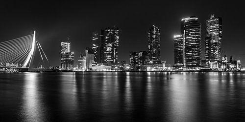 Rotterdam panorama van