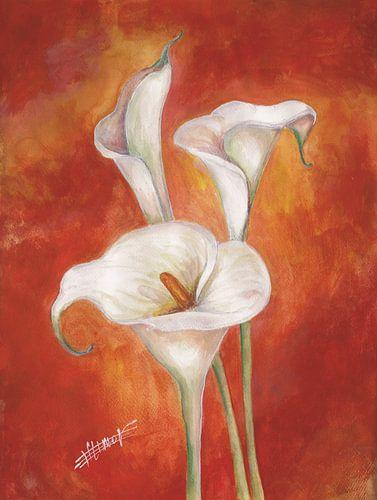 3 calla lilies von Bojan Eftimov