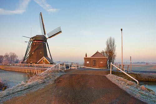 De Dijkmolen in Maasland