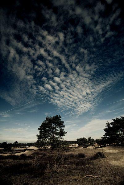 Rust en ruimte I van Edwin van Amstel