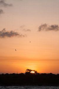 Zonsondergang op Zanzibar van