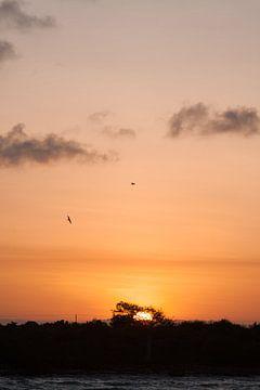 Zonsondergang op Zanzibar van Wesley Flaman