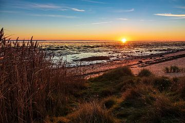 Landscape with sunrise on the North Sea island Amrum, Germany van Rico Ködder