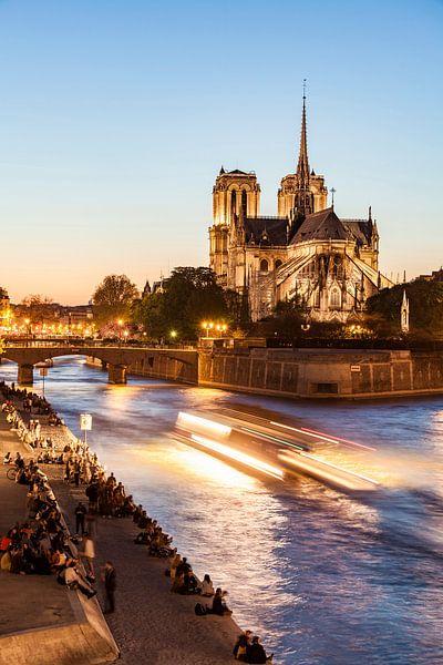 Notre-Dame de Paris at night van Werner Dieterich