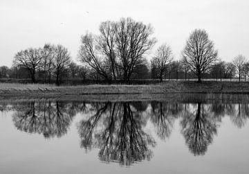Mirror von Jenny de Groot
