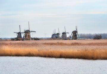 Molens Kinderdijk van Anouschka Hendriks