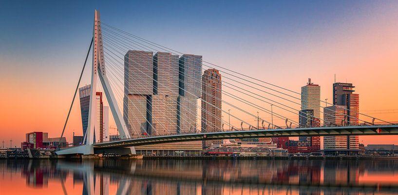 Rotterdam sur Reinier Snijders
