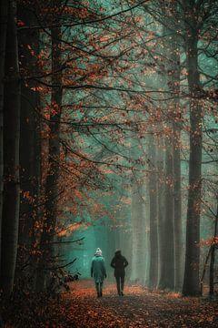 Wandelen door herfstkleuren van Rik Verslype