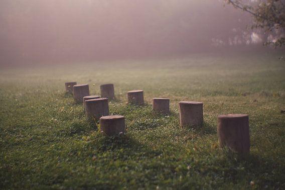 In de mist nog verlaten van Jeroen de Lang