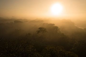 Zonsopkomst Pantanal, Brazilie von Leon Doorn