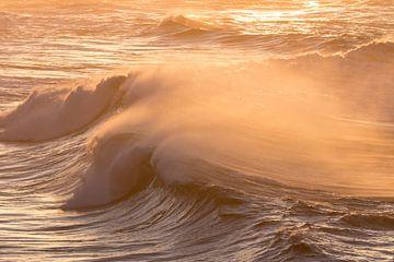 Goldene Wellen von Hetwie van der Putten