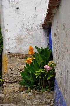 Bloemen op stenen trap von Anneke Wever