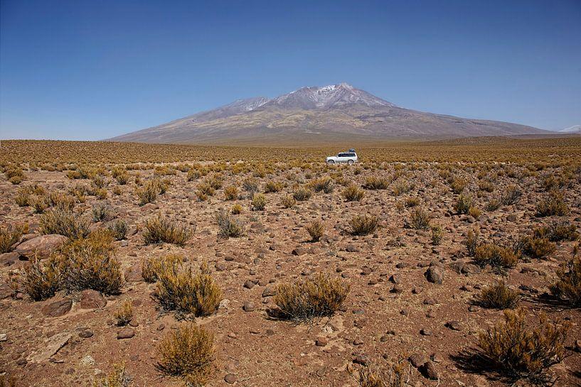 Salar de Tara. Een fourwheeldrive in het natuurreservaat van San Pedro de Atacama van Tjeerd Kruse