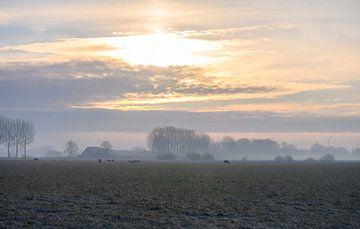 winterse zonsopkomst van Tania Perneel