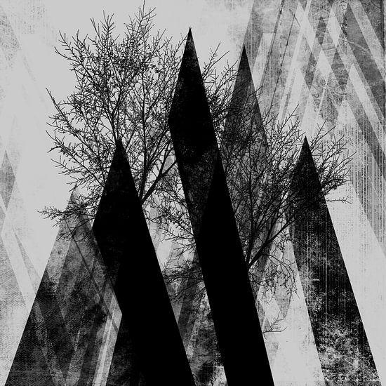 Trees V van Pia Schneider