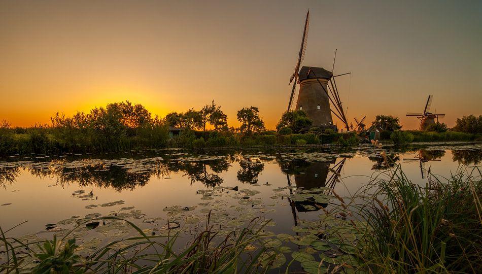 Gouden Kinderdijk Pano van Marc Smits