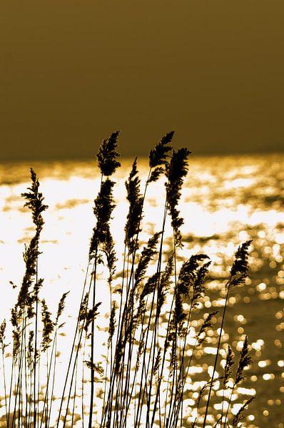 Sunset above the IJsselmeer van Erik van Riessen