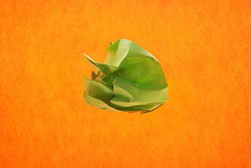 oranje groen van Brigitte van Ark