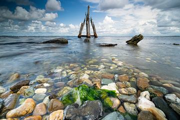 Adlerkopf im Grevelingensee, Zeeland von Fotografiecor .nl