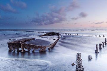 Wattenmeer von AGAMI Photo Agency