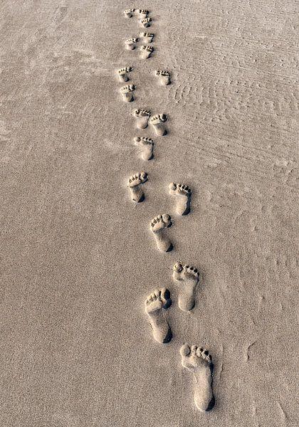 Happy Feet von Wad of Wonders