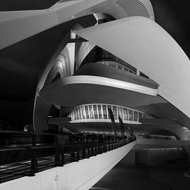 Loopbrug naar het operagebouw van Valencia van Rene Siebring