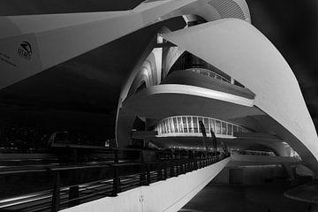 Spaziergang zum Opernhaus von Valencia von Rene Siebring