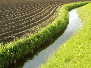 Lines in the landscape sur Titia Buren