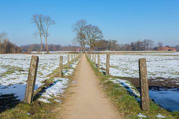 Feldweg durch Winterlandschaft mit Schnee in den Niederlanden von Ben Schonewille