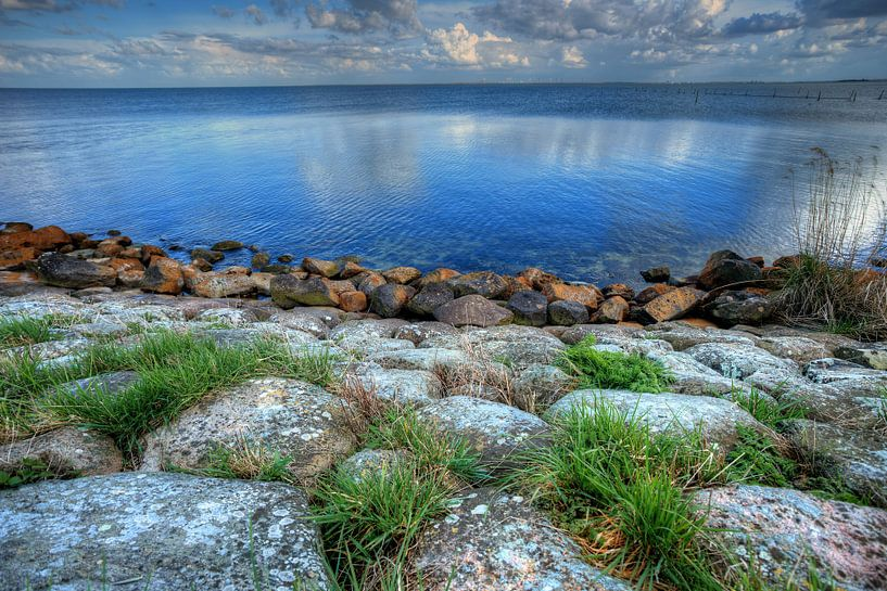 Beauty of Nature van Richard Marks