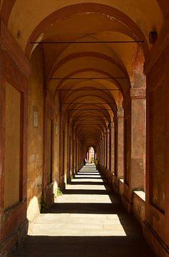 De bogen van Bologna van Renzo de Jonge