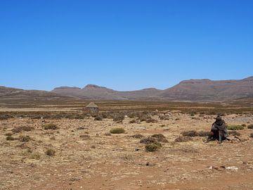 Herder, Lesotho van Marleen Berendse