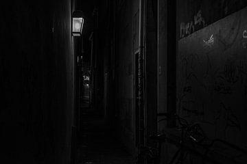 Utrecht bei Nacht von Bart van Lier