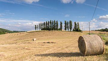 Boerenland in de buurt van Larroque Frankrijk von Harry Kors