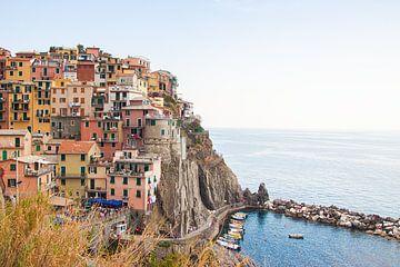 Cinque Terre, Italië van Michelle Rook