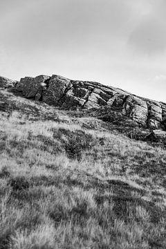 Sliding Rock von Twan van Vugt