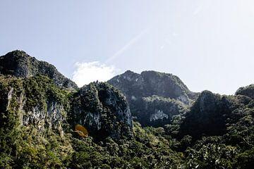 Felsen in El Nido auf den Philippinen von Yvette Baur