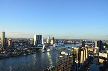 MS Rotterdam aan de voet van de Rotterdam in Rotterdam