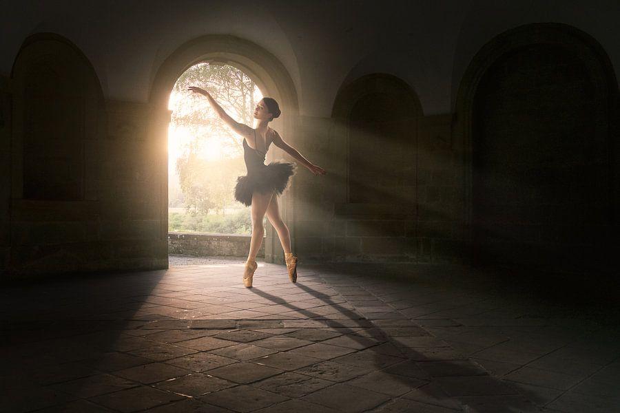 Magical light dance van Arjen Roos