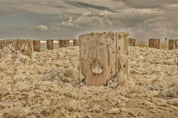 schuimkoppen op het strand von anne droogsma