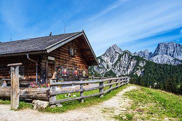 Blick auf die Litzlalm mit Hütte in Österreich von Rico Ködder
