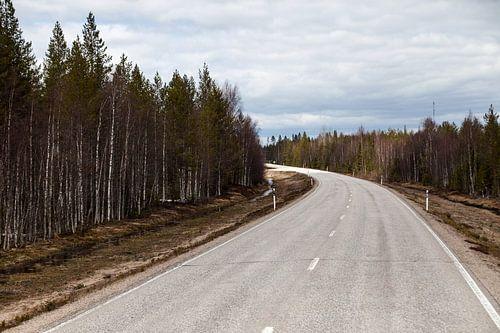 Een weg door Finland