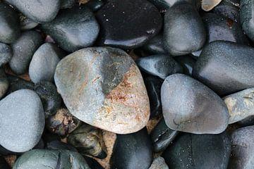 Stenen van Willem-Jan Trijssenaar