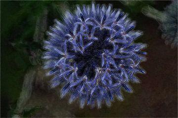 Bloemen 13 van Miriam Duda