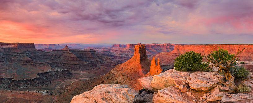 Marlboro Point, Utah van Henk Meijer Photography