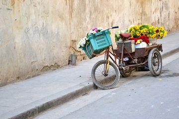 Vélo Fleur sur Imke Beijer