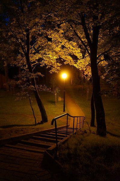 Park im Herbst van Iwona Sdunek alias ANOWI