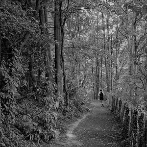Jogger in bosrijke omgeving nabij Antwerpen, België van Marc Pennartz