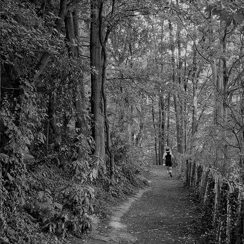 Jogger in bosrijke omgeving nabij Antwerpen, België